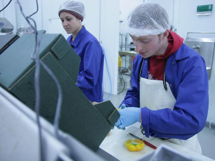 Zwei Personen in Hygienekleidung beim Gemüseschneiden
