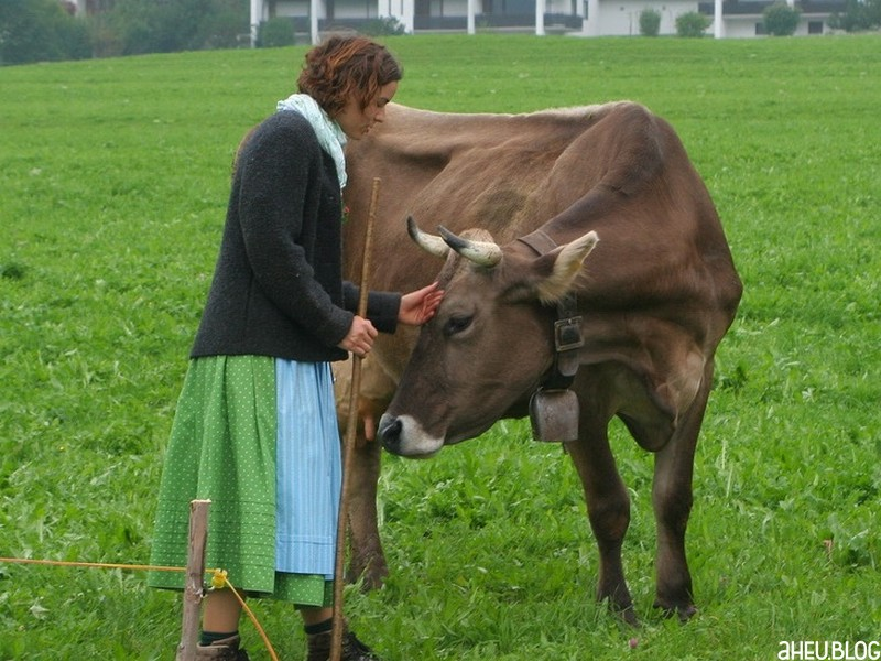 Frau mit Kuh